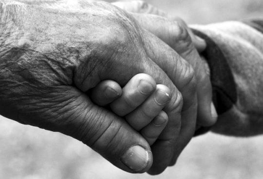 Прабабушка и правнук — не близкие родственники?
